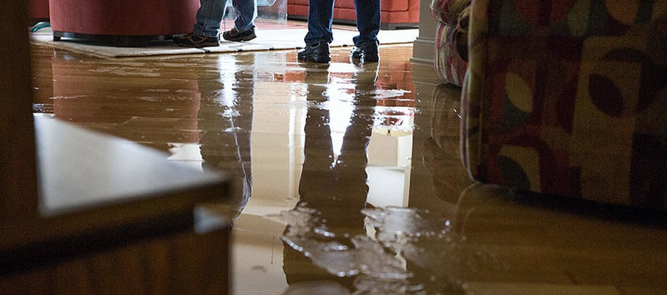 water damage restoration service, water damage clean up service