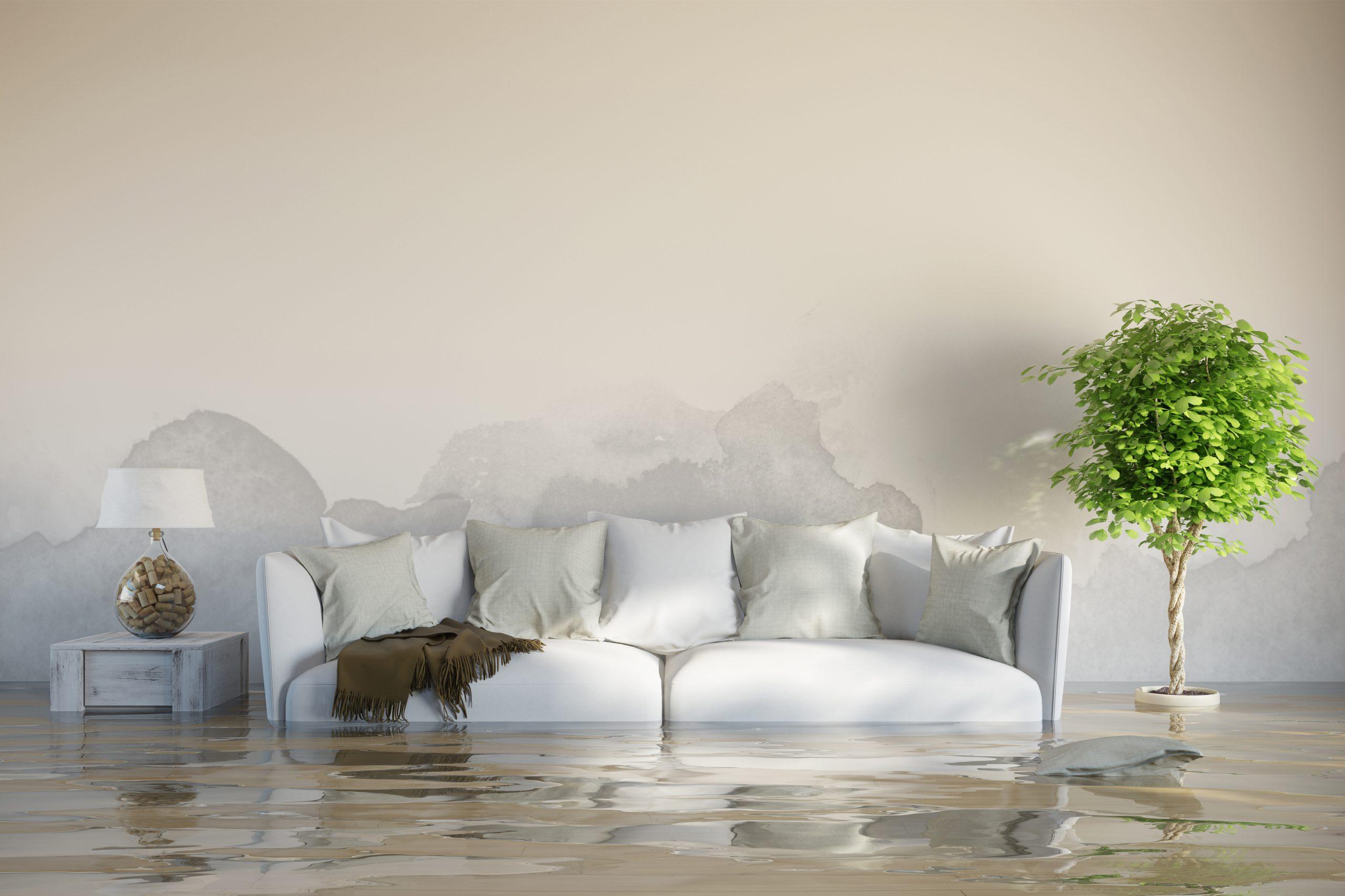 water damage repair Madison WI