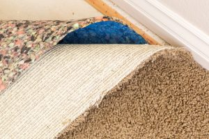 Carpet mold from water damage along baseboards