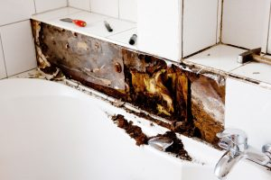black mold growth behind tiles of office bathroom
