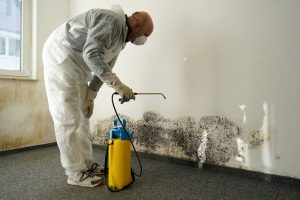 tips to prevent commercial building mold | services by A&J Property Restoration DKI of Madison, Middleton, Sun Prairie, Portage, Waunakee, Milwaukee, WI Dells, Fort Atkinson, Watertown, and Waukesha, Wisconsin