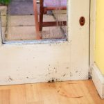 mold on wood door and baseboard