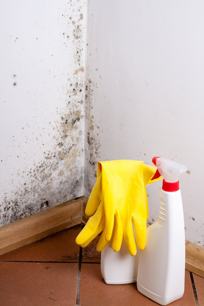 tips for removing mold smells | services by A&J Property Restoration DKI of Madison, Middleton, Sun Prairie, Portage, Waunakee, Milwaukee, WI Dells, Fort Atkinson, Watertown, and Waukesha, Wisconsin
