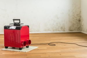 prevent mold smells by using proper equipment including dehumidifiers | services by A&J Property Restoration DKI of Madison, Middleton, Sun Prairie, Portage, Waunakee, Milwaukee, WI Dells, Fort Atkinson, Watertown, and Waukesha, Wisconsin