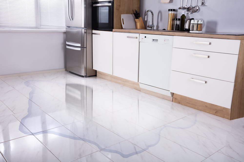 avoid water damage by keeping up on dishwasher and appliance maintenance | services by A&J Property Restoration DKI of Madison, Middleton, Sun Prairie, Portage, Waunakee, Milwaukee, WI Dells, Fort Atkinson, Watertown, and Waukesha, Wisconsin