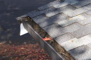 gutter system clogged with leaves