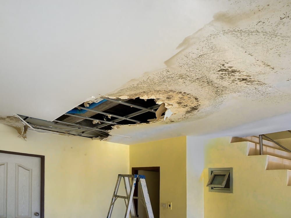 basement ceiling damaged by unknown water leak