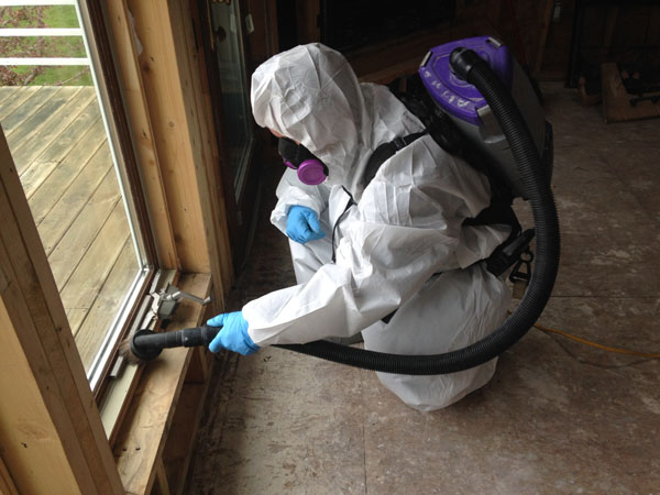 residential mold removal hepa vacuuming