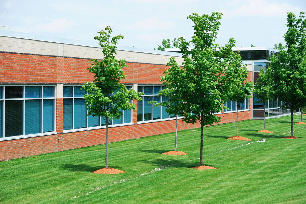 exterior commercial building with green trees and grass