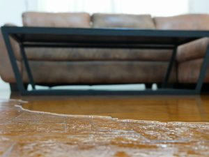 water damage restoration madison wi, water damage repair madison wi, water damage cleanup madison wi